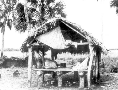 Native American Homes - Chickees