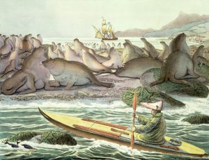 aluet's Russian invasion Alaskan Indian Tribes